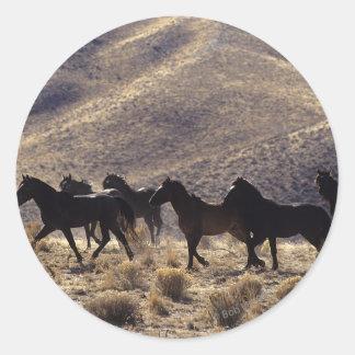 Wild Mustang Horses in the Desert 1 Round Sticker