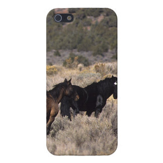 Wild Mustang Horses in the Desert 2 Cover For iPhone SE/5/5s