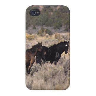 Wild Mustang Horses in the Desert 2 iPhone 4 Case