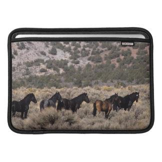 Wild Mustang Horses in the Desert 2 MacBook Air Sleeve
