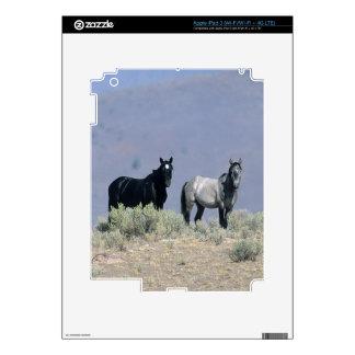 Wild Mustang Horses in the Desert 3 Decals For iPad 3