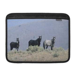 Wild Mustang Horses in the Desert 3 MacBook Sleeve