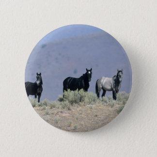 Wild Mustang Horses in the Desert 3 Pinback Button