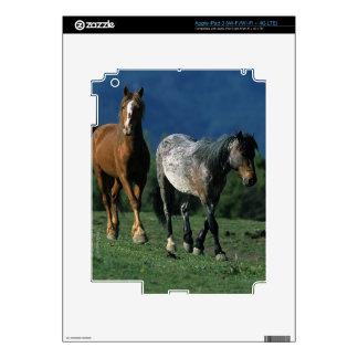 Wild Mustang Horses iPad 3 Decals