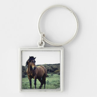 Wild Mustang Keychain