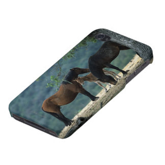 Wild Mustang Mare & Foal Case For iPhone 4