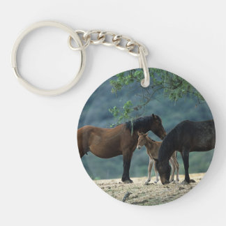Wild Mustang Mare & Foal Double-Sided Round Acrylic Keychain
