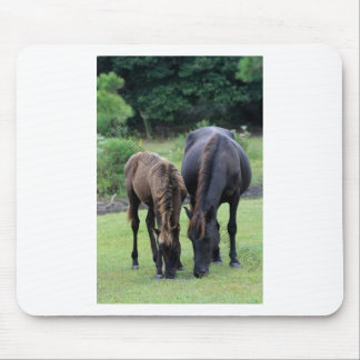 Wild Mustang Mare & Foal OBX NC Mouse Pad