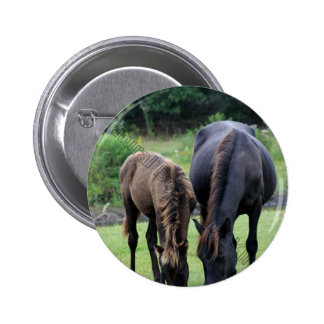 Wild Mustang Mare & Foal OBX NC Pinback Button