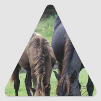 Wild Mustang Mare & Foal OBX NC Triangle Sticker