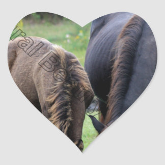 Wild Mustang Mare & Foal OBX NC Heart Sticker