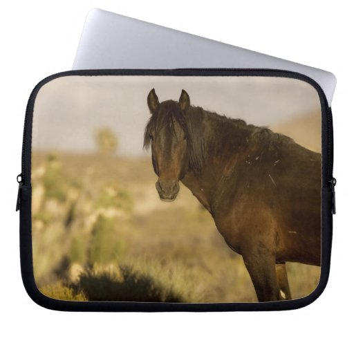 Wild Mustang stallion, Wheeler Peak herd, Cold Laptop Computer Sleeve