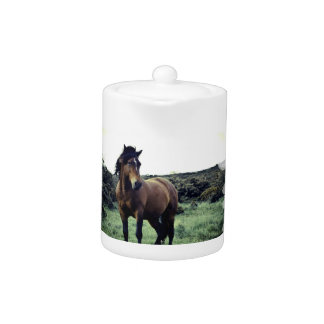Wild Mustang Teapot