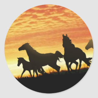 Wild Mustangs Classic Round Sticker