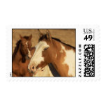 Wild Mustangs Postage Stamp