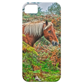 Wild New Forest Pony Horse-lover's Gift iPhone 5 Cover