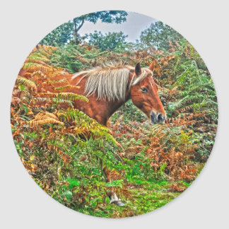 Wild New Forest Pony Horse-lover's Gift Classic Round Sticker