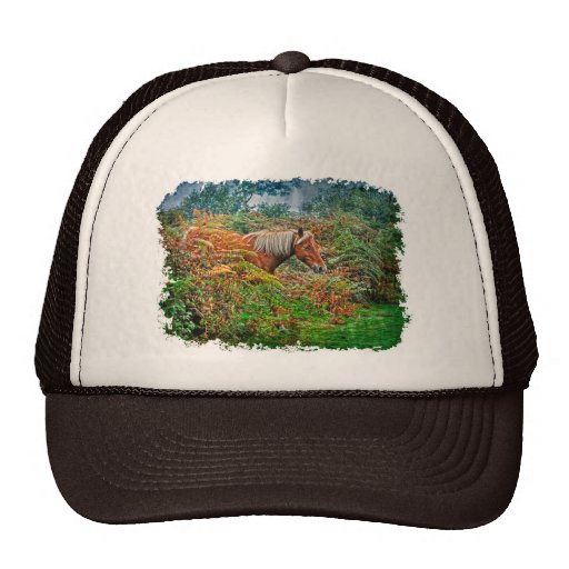 Wild New Forest Pony Horse-lover's Gift Hats
