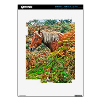 Wild New Forest Pony Horse-lover's Gift iPad 3 Decal