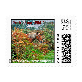 Wild New Forest Pony Horse-lover's Gift Postage
