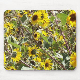 Wild New Mexico Sunflowers Mouse Pad