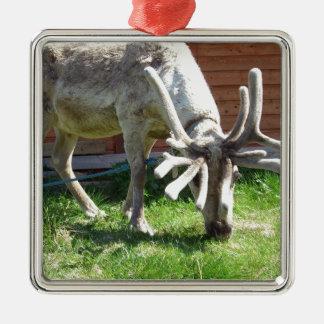 wild norway metal ornament