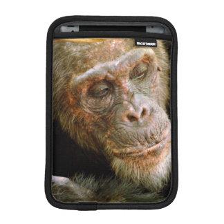 Wild Old Male Chimpanzee (Pan Troglodytes) Sleeve For iPad Mini