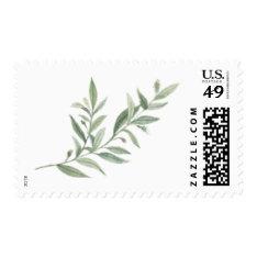 Wild Olive Branch Postage at Zazzle
