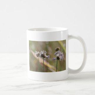 Wild Onion Wildflowers - Wild Onion - Crow Garlic Coffee Mug