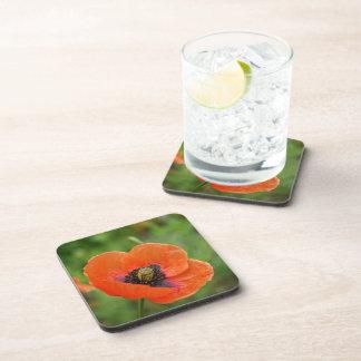 Wild Orange Poppy Flower (NZ) Set of 6 Drink Coaster