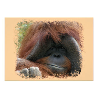 Wild Orangutan Birthday Party Invites
