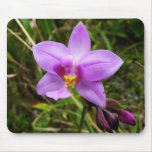 Wild Orchid Purple Tropical Flower Mouse Pad