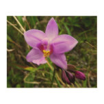 Wild Orchid Purple Tropical Flower Wood Wall Art