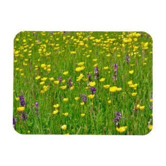 Wild Orchids and Buttercups Rectangular Photo Magnet