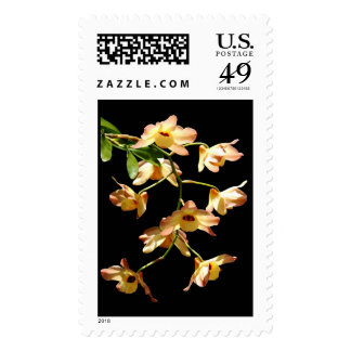 Wild Orchids Postage Stamps