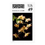 Wild Orchids Postage Stamp