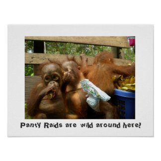 Wild Panty Raids Poster