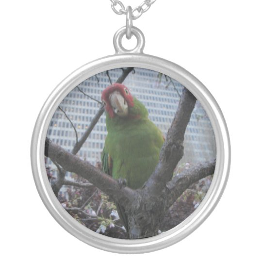 Wild parrot #2 silver plated necklace