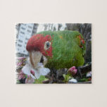 Wild Parrot #5 Jigsaw Puzzles