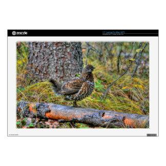 """Wild Partridge & Forest Floor Game Bird Photo 17"""" Laptop Decals"""