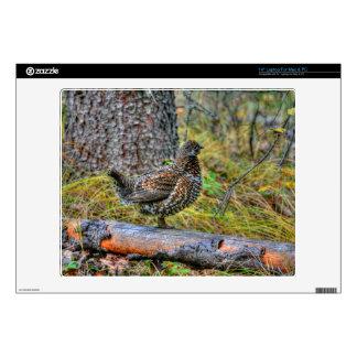 Wild Partridge & Forest Floor Game Bird Photo Skin For Laptop