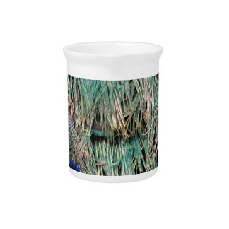 Wild Peacock Feathers Lovely Colors Beverage Pitchers