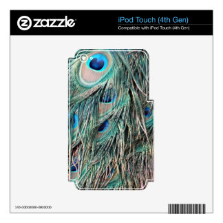 Wild Peafowl Feather Eyes Decal For iPod Touch 4G
