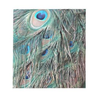 Wild Peafowl Feather Eyes Notepad
