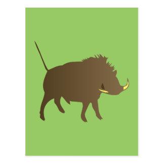 Wild pig wildly boar postcard