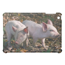 Wild Piglets iPad Speck Case Case For The iPad Mini