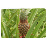 Wild Pineapple Tropical Fruit in Nature Floor Mat