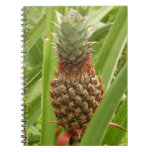 Wild Pineapple Tropical Fruit in Nature Notebook