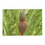 Wild Pineapple Tropical Fruit in Nature Placemat