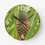 Wild Pineapple Tropical Fruit in Nature Round Clock